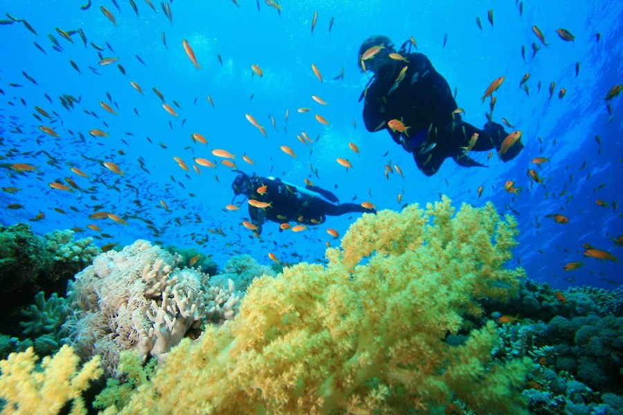 Andaman – Coral Reefs and Romance Underwater