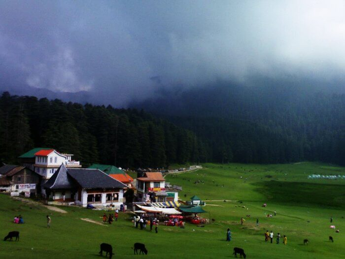 Meadows-in-Dalhousie