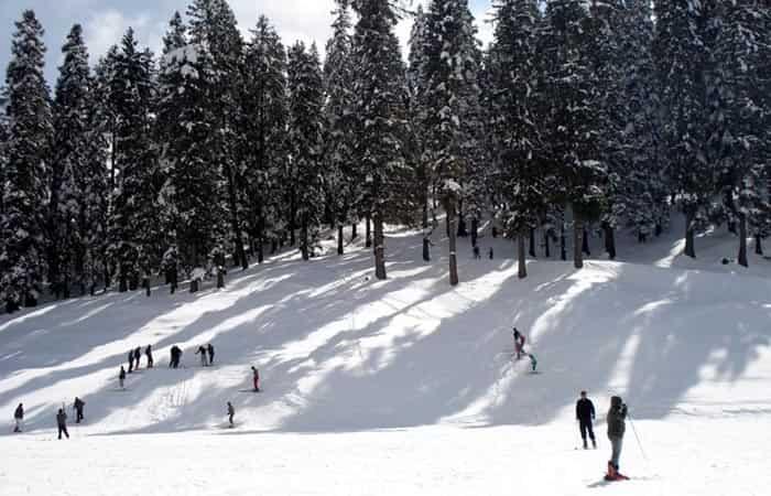 Narkanda Shimla