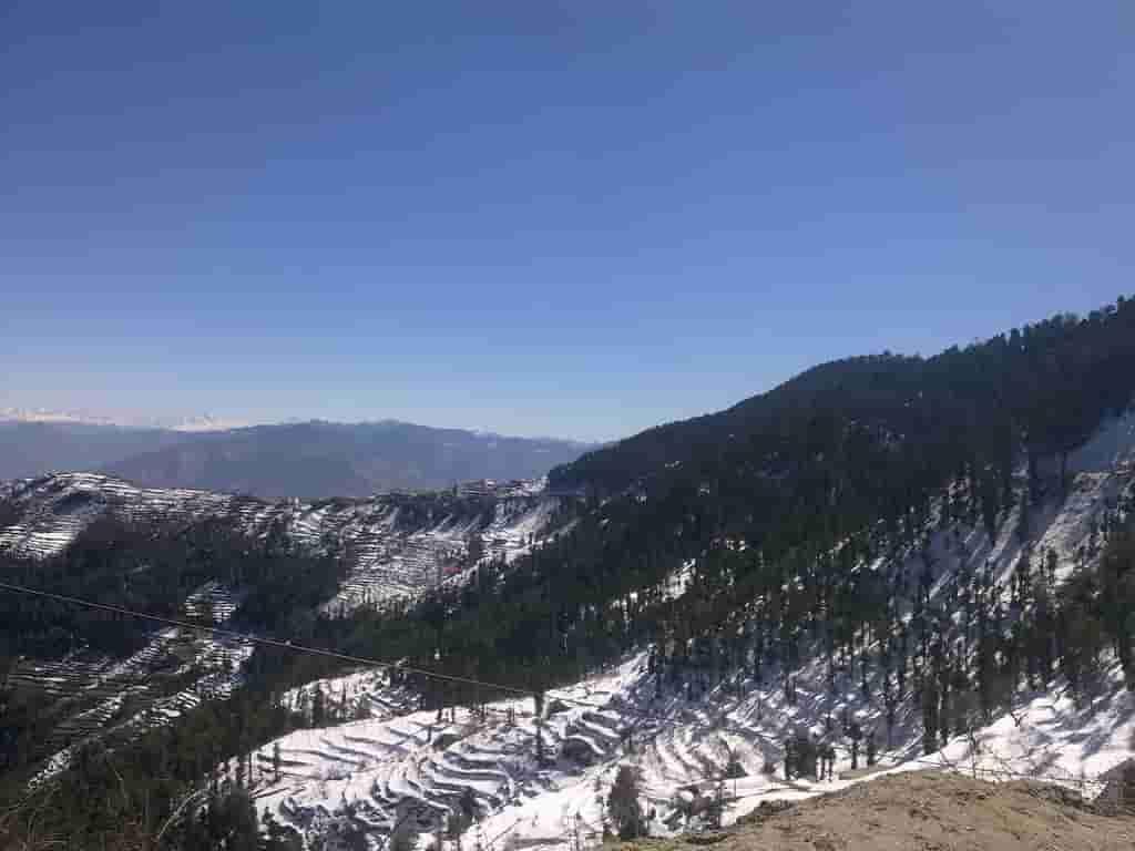 snow-fall-at-fagu-shimla