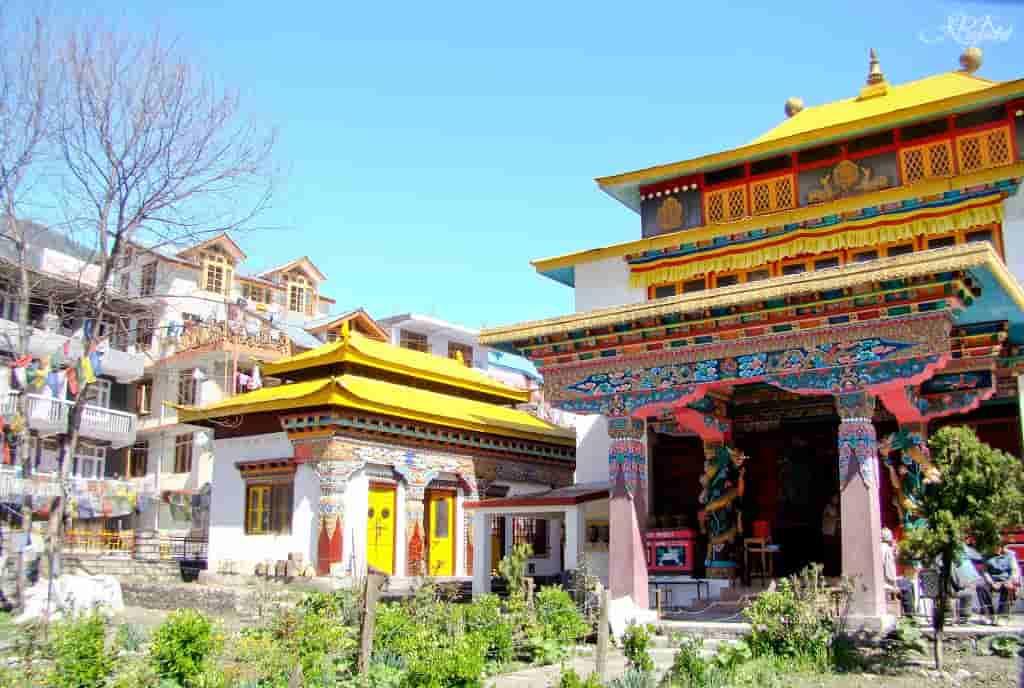 Tibetan Monasteries manali